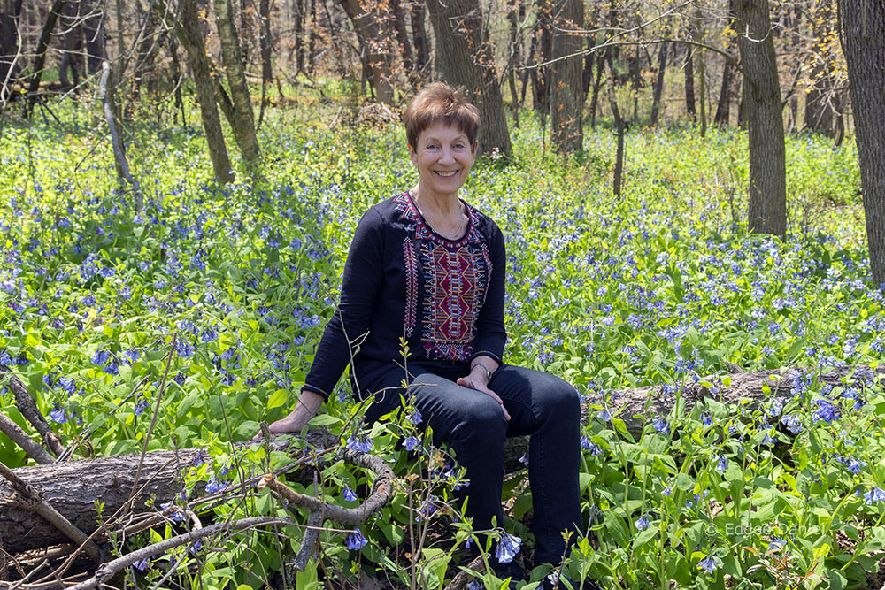 The artist sitting among Bluebells in bloom at Donges Bay Gorge