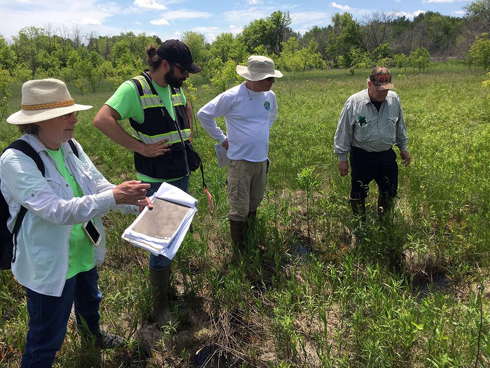 Alice Thompson, Aaron Menke, Gary Raasch and Bill Sasse survey wetland improvement locations at Gitzlaff Park.