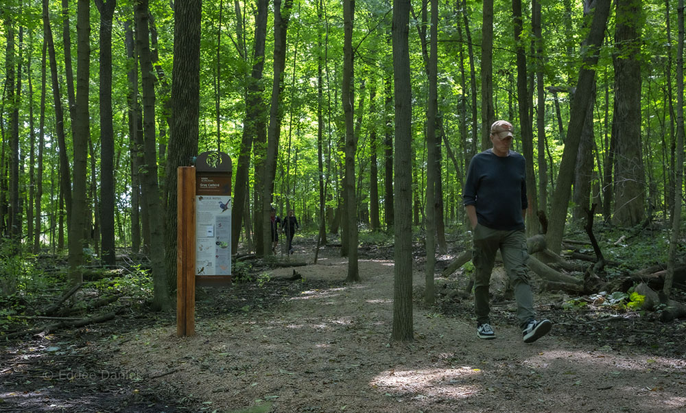 Interpretive station on the self-guided nature trail