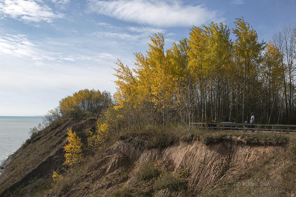 Overlook. Lion's Den Gorge Nature Preserve.