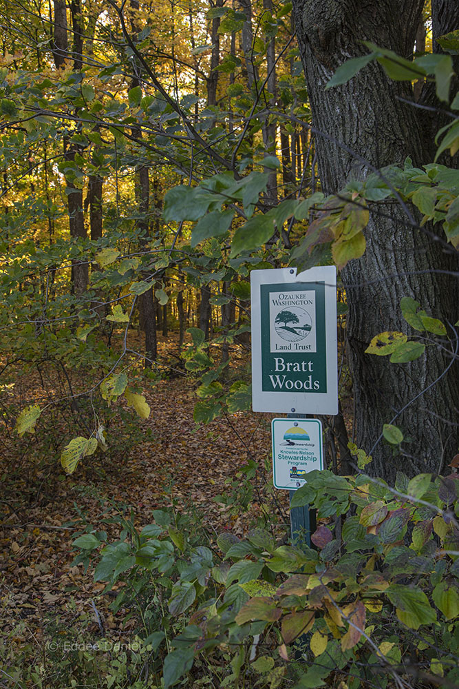 Entrance to Bratt Woods State Natural Area.