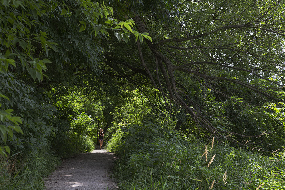A lone jogger on the East Bank Trail