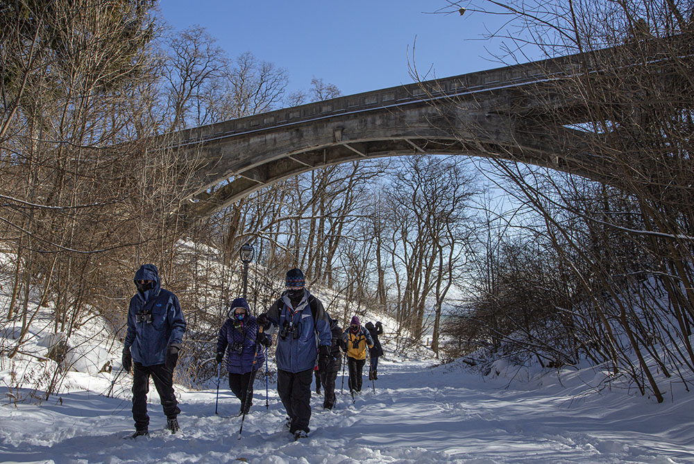 Olmsted-designed Ravine Road has been closed to traffic for years after the historic bridge was found to have deteriorated. Plans to repair it are under consideration.