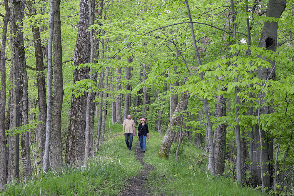 A hike under the canopy on the Esker Trail at Lac Lawrann Conservancy, West Bend.