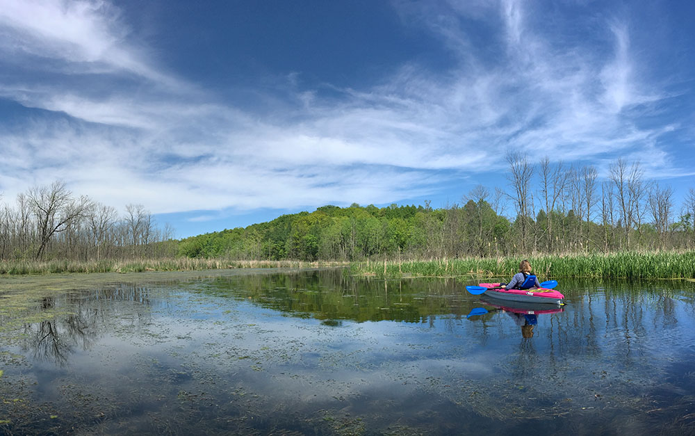 Kettle Moraine State Forest - Loew Lake Unit, Washington County