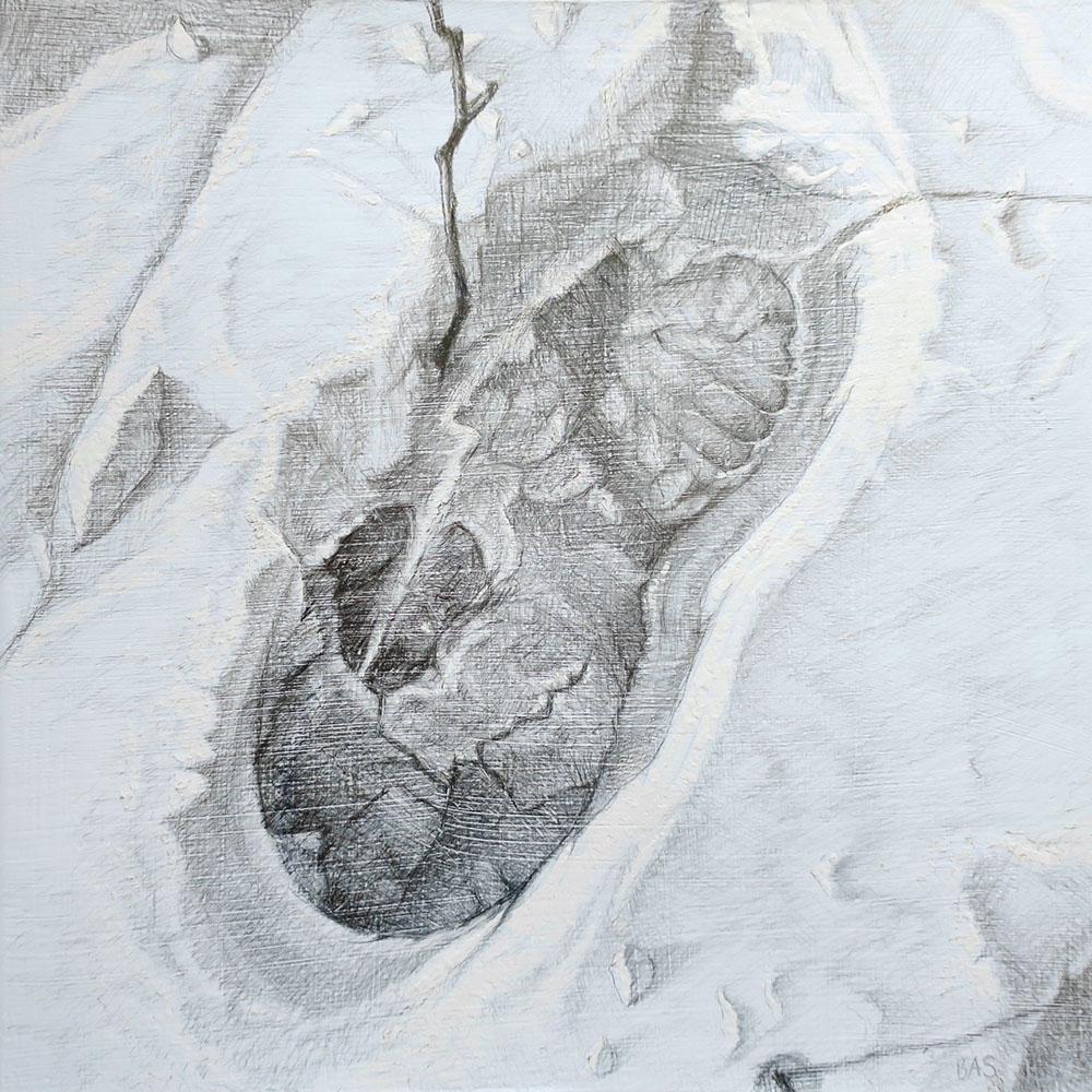 Fitzsimmons Forest Floor, Winter 5