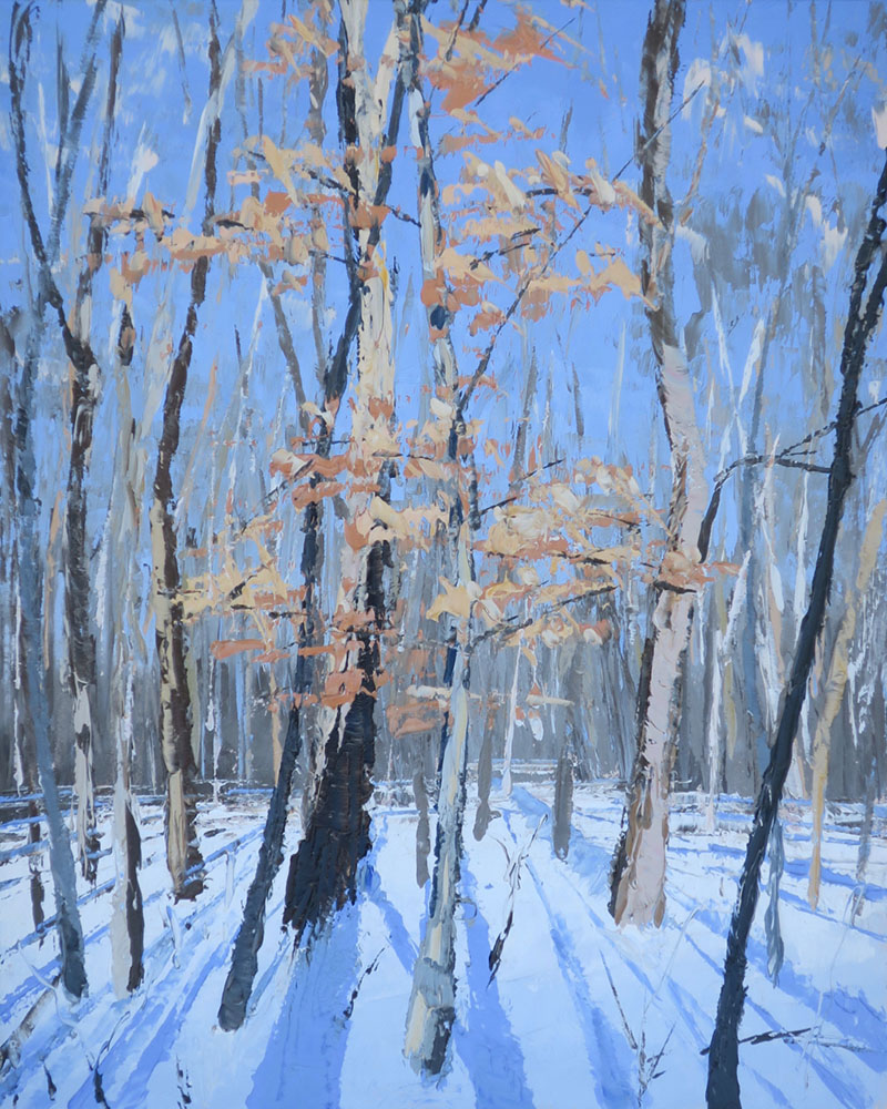 Fitzsimmons Woods, Winter-sketch 4