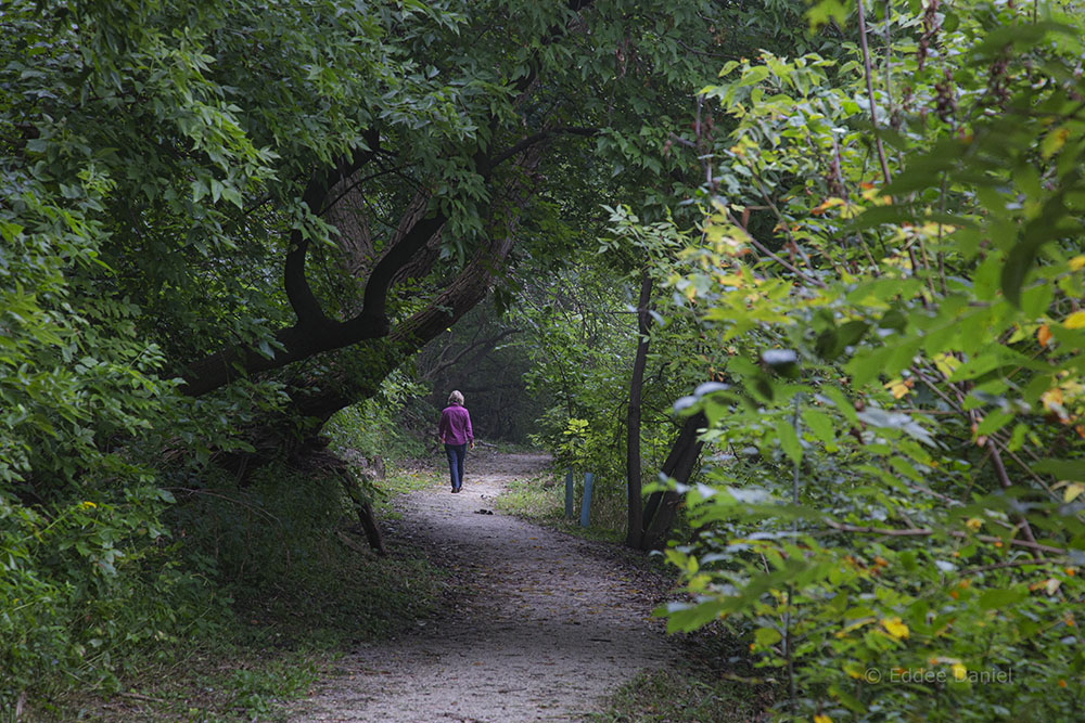 A moment of solitude on the East Bank Trail, which extends from one end of the Greenway to the other.