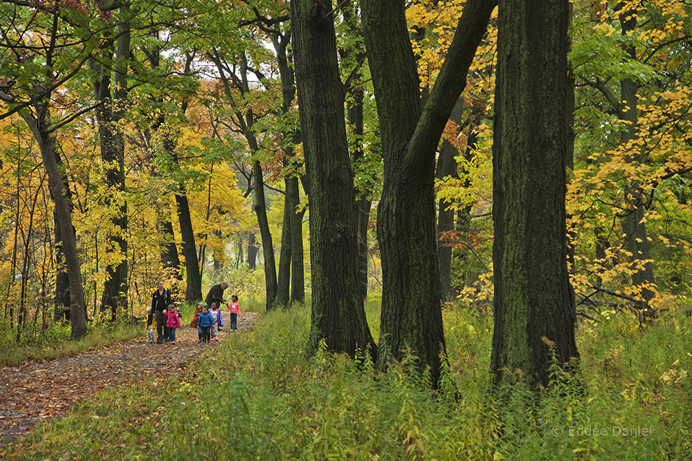 A group of schoolchildren on an outing in Riverside Park led by the Urban Ecology Center.
