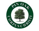 pin-oak-trans