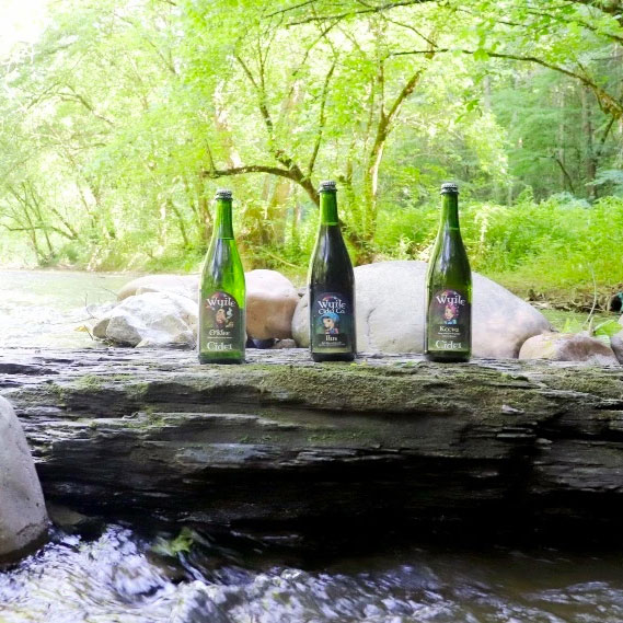 3 bottles of sparking cider on a rock in the waterfall