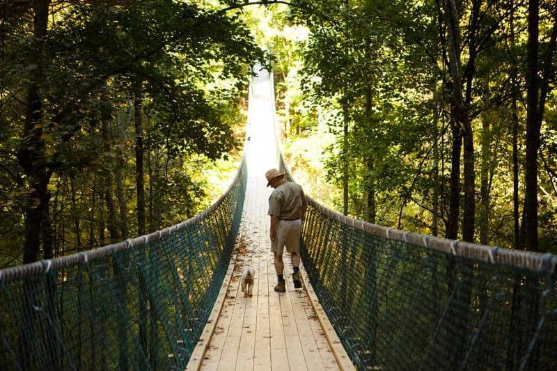 man and dog walking across Prosperity bridge at Foxfire Mountain