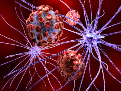 Can You Reverse Memory Loss From Cannabis?