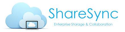 Share Sync File Storage Logo