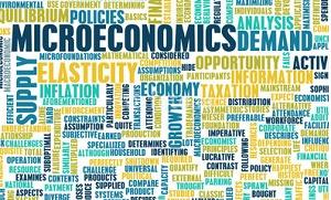 The Microeconomics of Human Capital