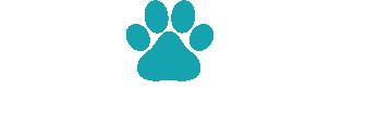 Evolve Dog Training