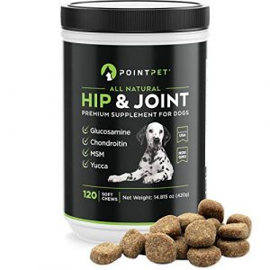pointpet-glucosamine-for-dogs-hip-and-joint-supplement-soft-chews-120-pcs--300x300 BADSPACE