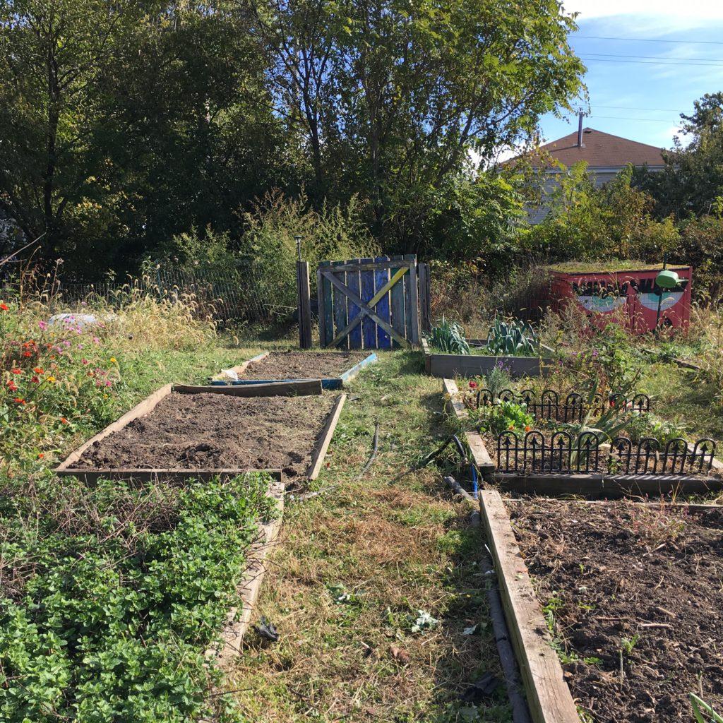 filbert street garden 3
