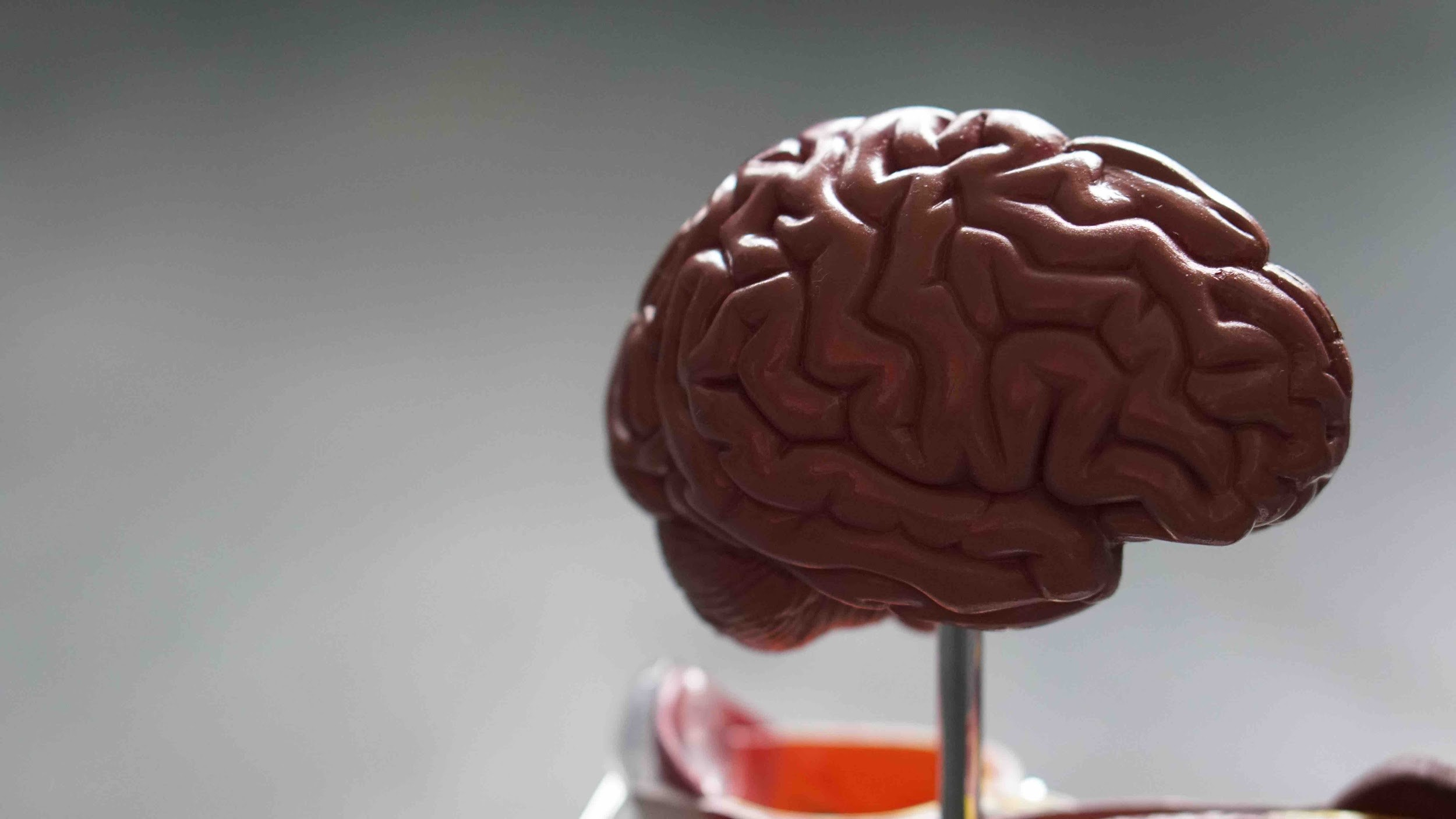 Brain Injuries: After a Car Accident