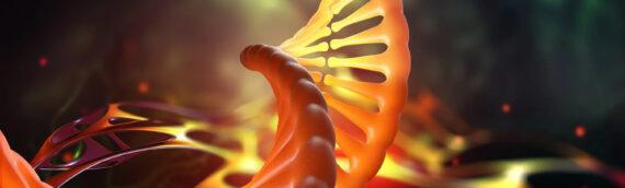 Modern Retina: Optogenetic Gene Trial Begins, First Patient Dosed