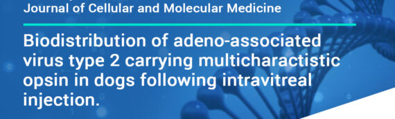 Journal of Cellular and Molecular Medicine: Biodistribution of adeno-associated virus type 2 carrying multi-characteristic opsin in dogs following intravitreal injection