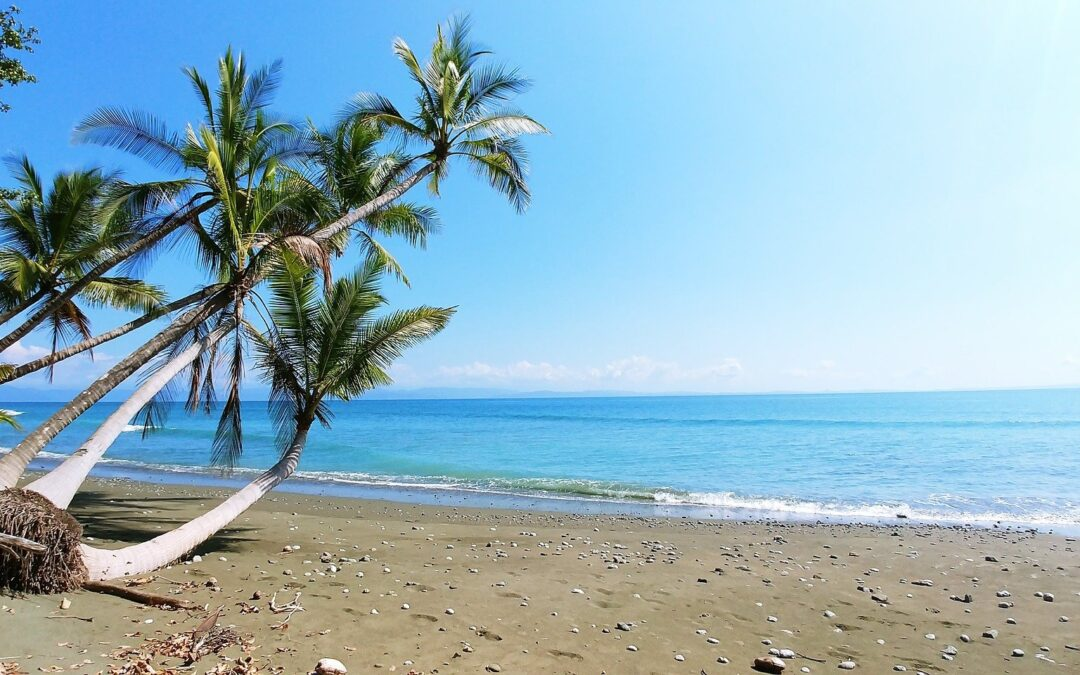 Pura Vida: Costa Rica Is The Happiest Country In The World