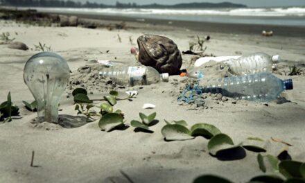 Costa Rica's Osa Peninsula Efforts to Eliminate Single Use Plastic
