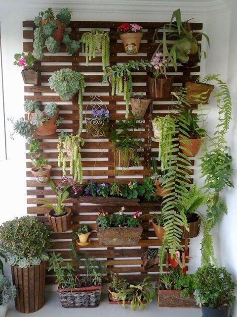 Decoración con plantas DIY en tablas de madera