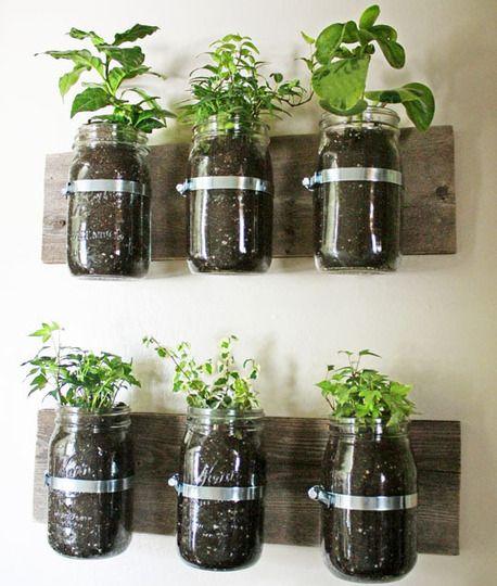 Decoración con plantas DIY siembra vertical
