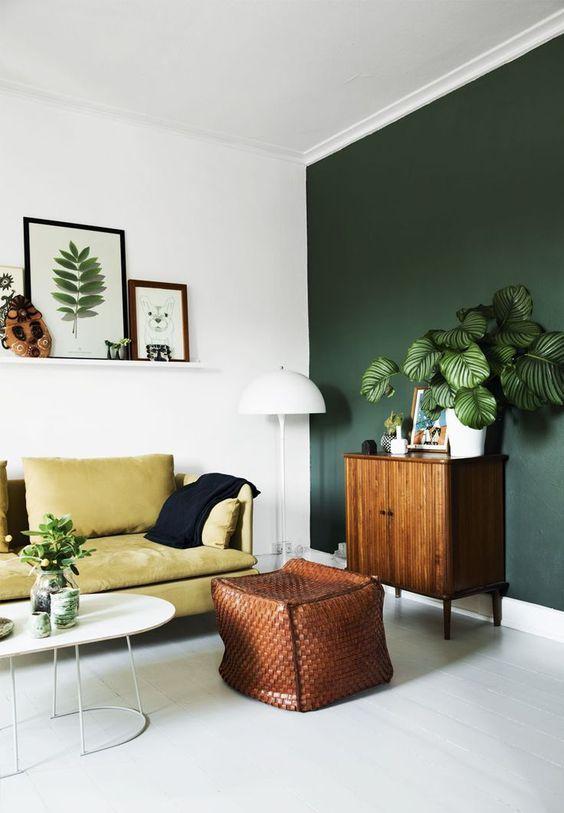 Decoración con plantas en macetas en contraste