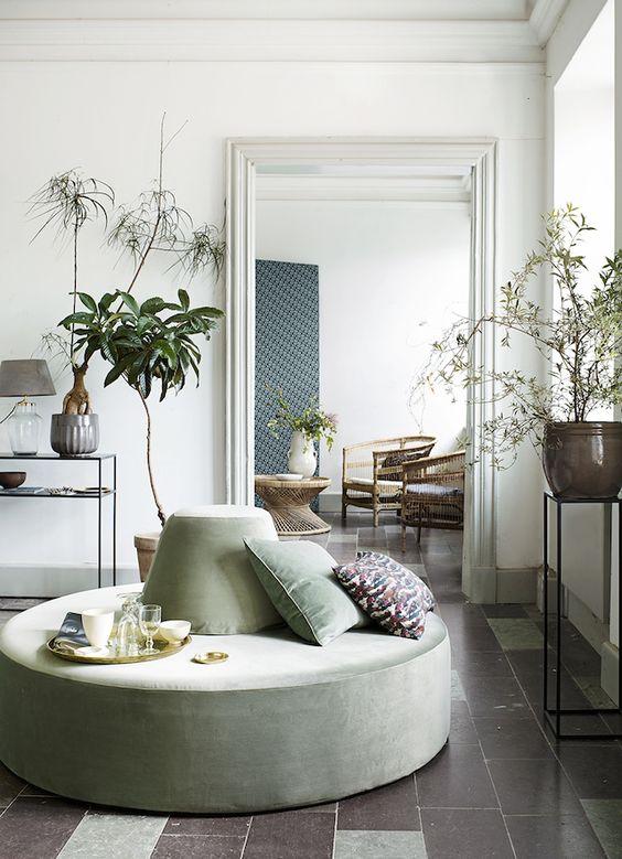 Decoración con plantas en macetas originales