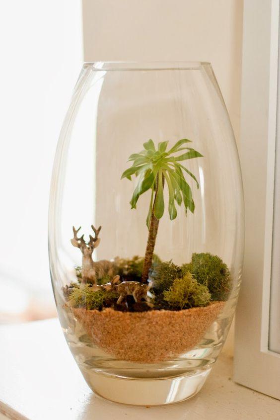 Decoración con plantas en terrarios sencillos