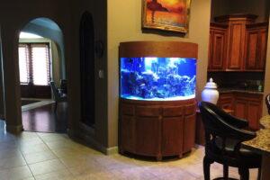 Bow Aquarium