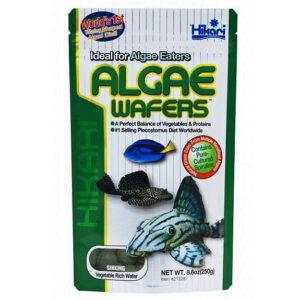 Hikari Algae Wafer 8.8oz