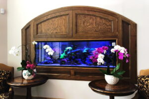 Custom Coral Saltwater Aquarium