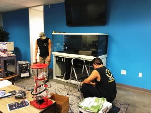 Exotica Reef Designs Installation