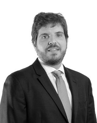 Retrato do associado Marcelo Sampaio Góes Ricupero