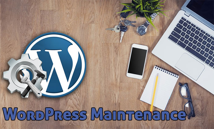 WordPress Maintenance - Website Maintenance, Support Services, Help & Optimization - Don't wait until your website crashes to get the help you need.