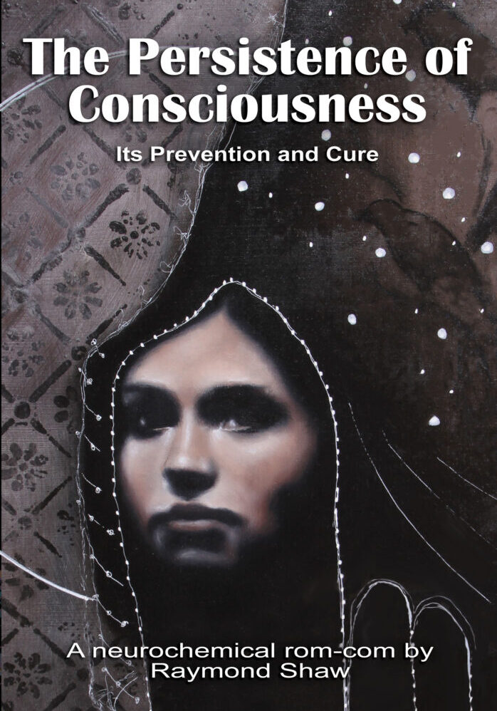 THE PERSISTENCE OF CONSCIOUSNESS