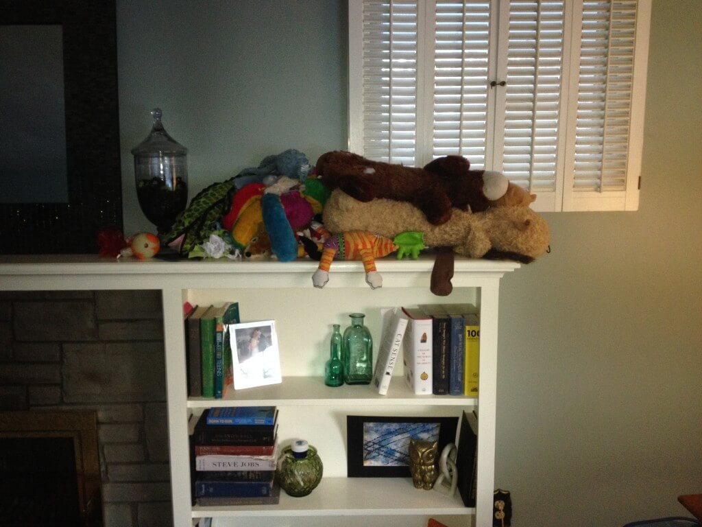 Looks like our young pup is still in his toy destruction phase. Check out our toy graveyard on the mantle!