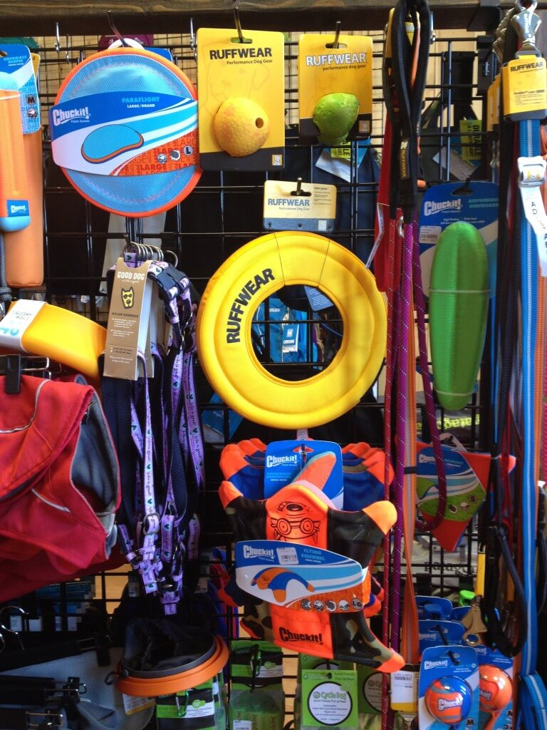 Chuckit! and Ruffwear - what else could a dog need?!