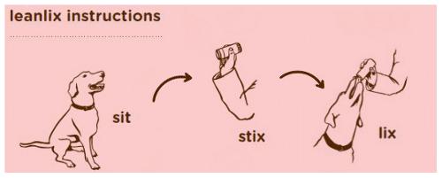 Leanlix Instructions