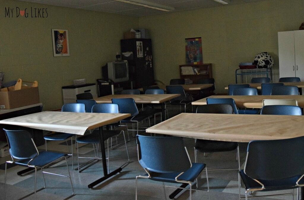 A classroom for one of the educational programs at Lollypop Farm