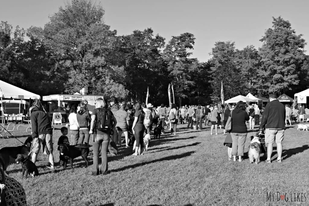 The start of the Lollypop Farm Pet Walk at the 2014 Barktober Fest