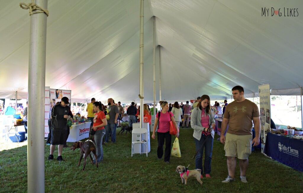 Some of the vendors at Lollypop Farm's Barktober Fest event