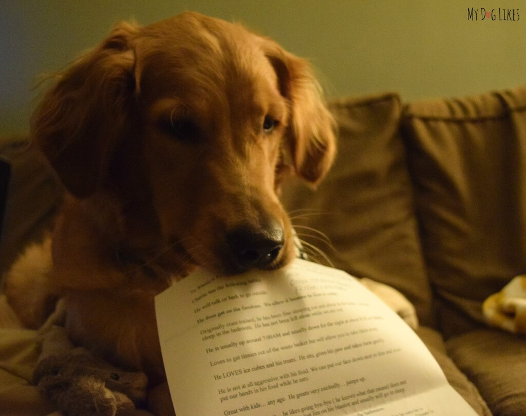 """Charlie holding his """"instructions for use"""" letter from his adoption paperwork"""