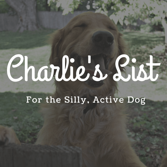 MyDogLikes 2014 Holiday Gift Guide - Charlie's List - For the silly, active dog