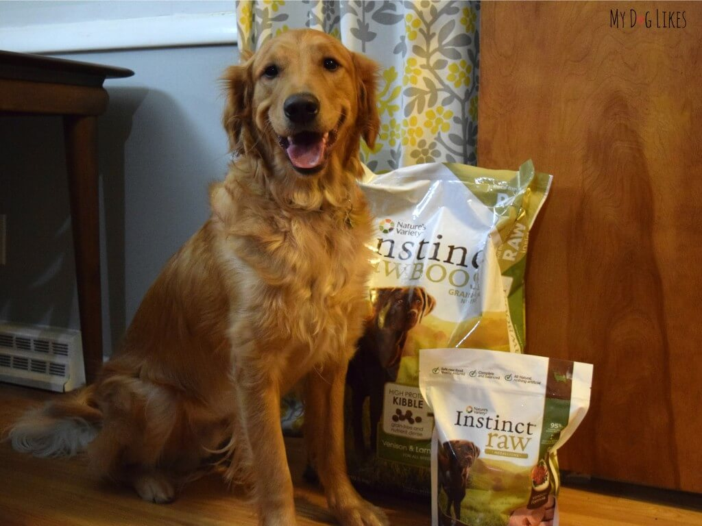 Charlie about to review the Nature's Variety Instinct line of dog food.