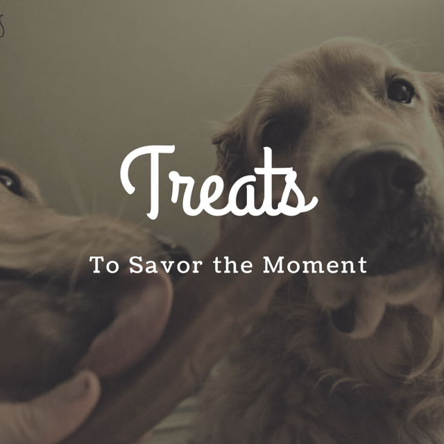 MyDogLikes 2014 Holiday Gift Guide - Treats - To savor the moment