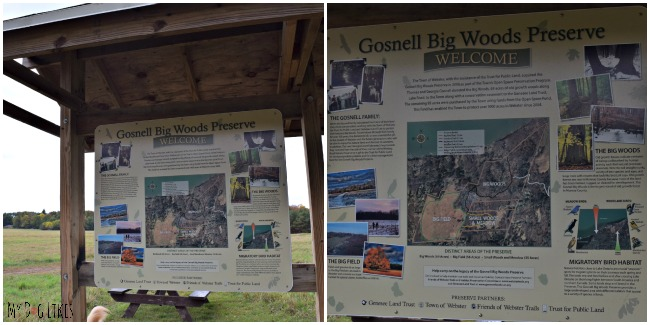 The entrance to Gosnell Big Woods Preserve in Webster, NY
